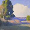 A Field in Sonoma