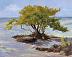 Annie's Beach by Jane Washburn