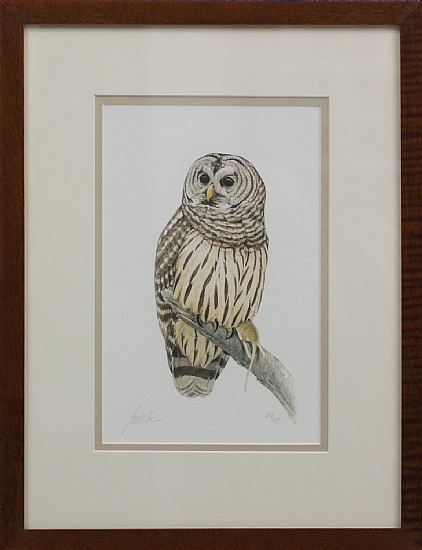 "Barred Owl (from ""Eastern Birds"") by James Coe Giclee print ~  x"