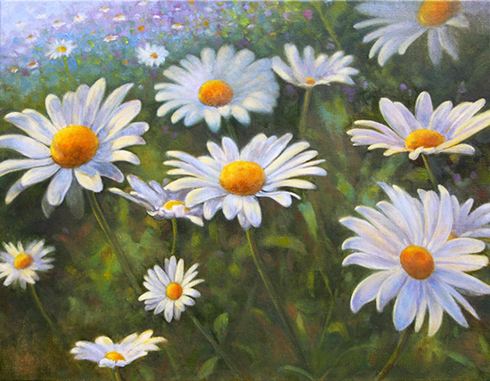 Field of Daisies - Limited Edition Print
