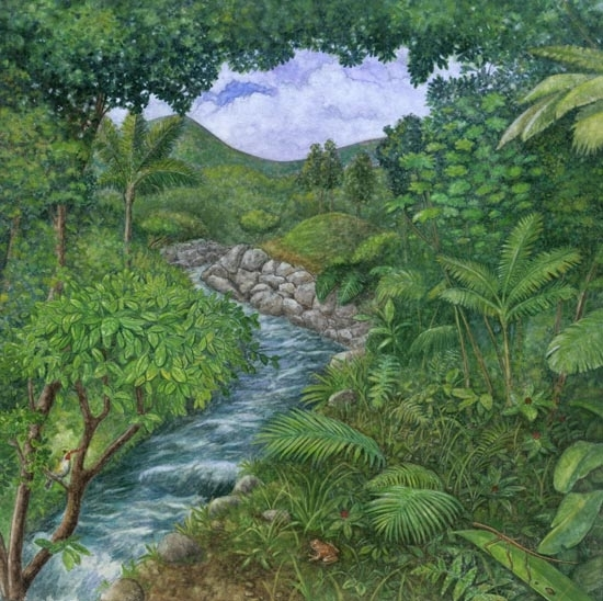 "El Yunque Rain Forest Before Hurricane by Robert Casilla Watercolor ~ 11"" x 11"""