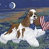 Proud To Be An American by Peggy Bang  ~ 12 x 16