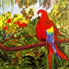 Macaw in Paradise