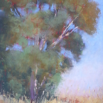 Jan Prisco - Painting Skyscapes, Seascapes, and Landscapes in Pastel