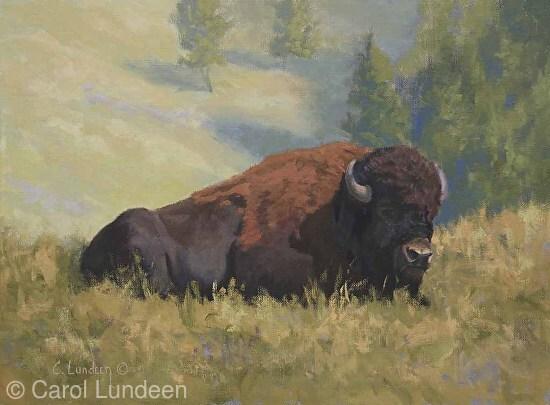 Soaking up the Sun - Buffalo 2014 Mentorship Study -
