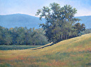 August Fields by Claire Beadon Carnell Oil ~ 18 x 24