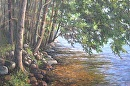 East Pond Shoreline by Claire Beadon Carnell Oil ~  x