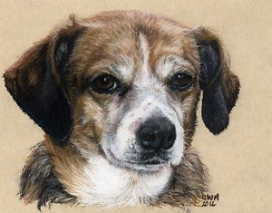 "Betty Lou Beagle mix by Candace Maley Pastel ~ 5"" x 7"""
