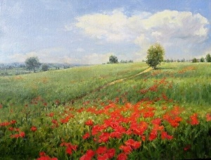 Tuscany, Hillside With Poppies by Karen Blackwood Oil ~ 18 x 24
