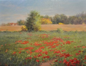 Poppies On A Hillside by Karen Blackwood  ~ 12 x -