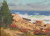"Surf Eden Road by Caleb Stone Oil ~ 6"" x 8"""