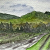 California Painting, Chateau St Jean, Sonoma Valley Watercolor 14-2