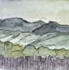 """Sonoma Hills"", California Painting. Klein Vineyards. Watercolor ACEO"