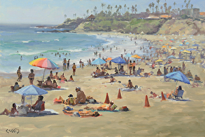 Beaches and Coves of Laguna Book and Show