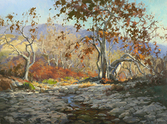 First Light in the Sycamores - Oil