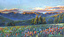 Spring Glitter below Gore Range by Cynthia Underwood