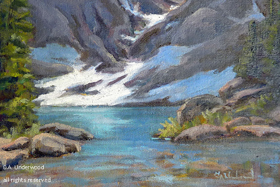 Blue Lakes Study - Oil