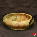 "#35611 Beetle Pine by Deborah & Russell Shamah  ~ 3"" x 9.5"""