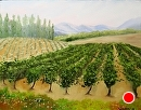 """Tuscan Vineyard Painting Original Painting by Northern California Artist Mark Webster by Mark Webster Oil ~ 11"""" x 14"""""""