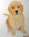 "Golden Retriever Puppy in the Snow Oil Painting by Northern California Artist Mark Webster by Mark Webster Oil ~ 10"" x 8"""