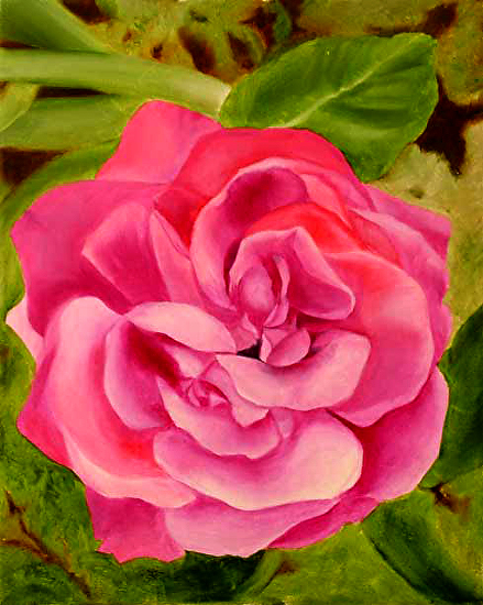 """The Flower in Normandy Oil Painting by Artist Mark Webster by Mark Webster Oil ~ 20"""" x 16"""""""