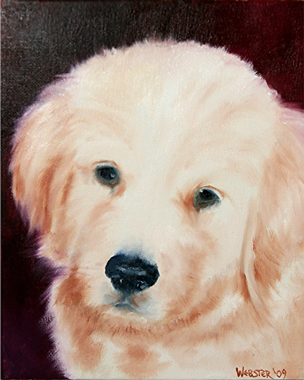 "Golden Retriever Puppy Portrait Oil Painting by Northern California Artist Mark Webster by Mark Webster Oil ~ 10"" x 8"""