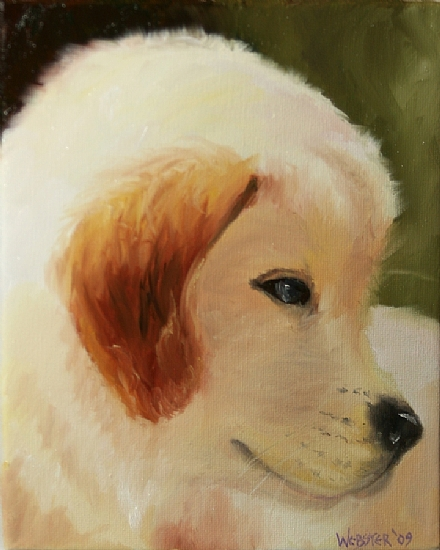 """Golden Retriever Puppy Portrait #2 Oil Painting by Northern California Artist Mark Webster by Mark Webster Oil ~ 10"""" x 8"""""""