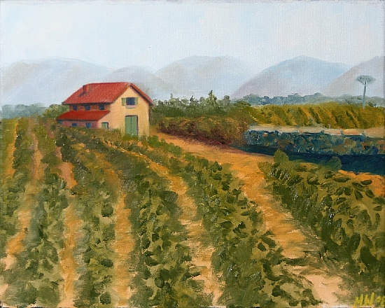 "Vineyard Oil Painting by Northern California Artist Mark Webster by Mark Webster Oil ~ 8"" x 10"""