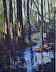 Deep in the Woods - 3 x 2 by John and Dodi Groesser