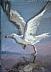 """On The Wing by Vcevy Strekalovsky Oil ~ 8"""" x 6"""""""