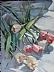 "Tossed Tulips by Vcevy Strekalovsky Oil ~ 16"" x 12"""