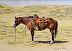 TRR Mr Clyde by Kathryn Leitner 100 Limited Edition Prints ~ 10 x 14