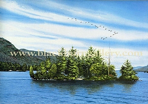 Lake George/ Adirondack
