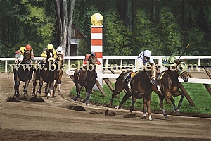 Saratoga Racing Series