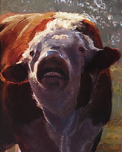 Outraged Bull by Daria Shachmut Oil ~ 20 x 16