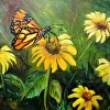 A Butterfly  and Yellow Coneflowers