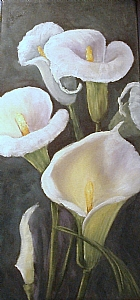Calla Lilies by Barbara Haviland Oil ~ 15 x 7