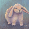Hip Hop Bunny