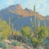 Tucson West