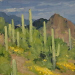 Bill Cramer - Desert Colors - Tubac, AZ