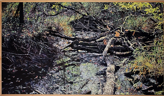 FALLEN TREES - OIL