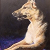 Sun Dog, acrylic