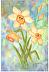 Daffodils by Marlene Goodman