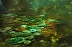 BHI Ibis Sanctuary by Paul Gala