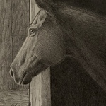 Lorrie Beck - America's Horse in Art Show and Sale 2021
