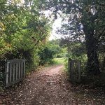 Robin Thornhill - One Day Plein Air Workshop - Woodsom Farm, Amesbury, MA