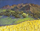 Mustard in the Old Vineyard by Beverly Wilson  ~  x