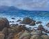 Pescadero Point by Jim Franecki