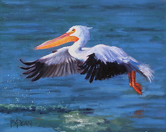 Landing Gear Down - Oil