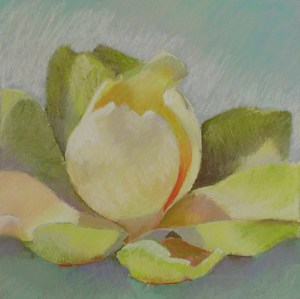 Morning Glow by Carolyn Hancock Pastel ~ 8.5 x 8.5